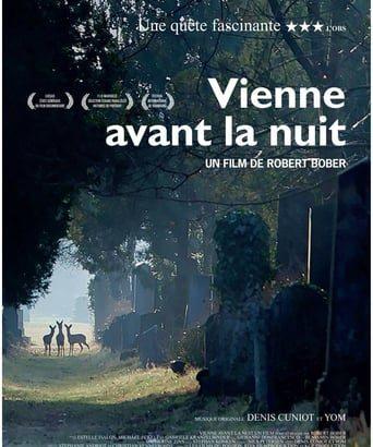 """Affiche du film """"Vienne avant la nuit"""""""
